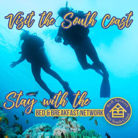 South Coast KZN - Dive Sites Aliwal Shoal and Protea Banks