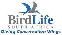 Birdlife South Africa