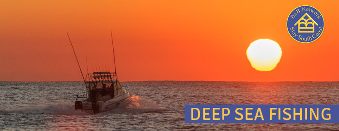 Deep Sea Fishing on the South Coast