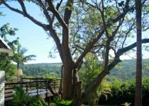 Zesty Guest House - Port Edward - South Coast Accommodation